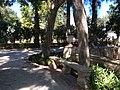 """""""000 San Anton Palace Garden 021"""".jpg"""