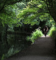 """After the rain "" , Cromford Canal towpath (7719493354).jpg"