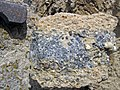 """Turritella Agate"" (partially chertified fossiliferous lacustrine limestone) (Laney Member, Green River Formation, Middle Eocene; North Barrel Springs Draw, south of Wamsutter, Wyoming, USA) 2 (19687779650).jpg"