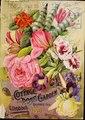 (Catalogue of) Cottage Rose Garden (IA catalogueofcotta1895gdro).pdf