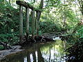 Žuvintė, tilto atrama.JPG