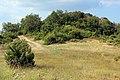Βάβδος Χαλκιδικής - panoramio.jpg