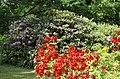 Ботанический сад, Минск, Беларусь - panoramio.jpg