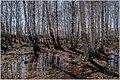 Весна на Южном Урале. - panoramio (9).jpg