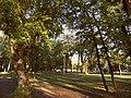 Весняні барви Міського Саду.jpg