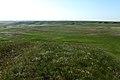 Вид с высоты в западном направлении - panoramio.jpg