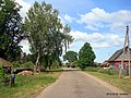 В деревне Ткачёво - panoramio.jpg