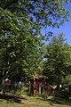 Голосіївський парк ім. М.Рильського IMG 3485.jpg