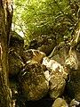 Каньона на река Шегава.JPG