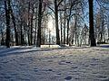 Кашин, Горсад - panoramio (48).jpg