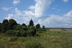Леса, поля и облака - panoramio.jpg