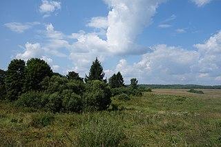 Novosokolnichesky District District in Pskov Oblast, Russia
