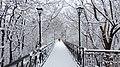 Маріїнський парк, тільки сніг та тиша.JPG