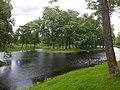 Островок на пруду возле павильона Озерки.jpg