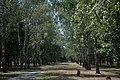 Памятник погибшим односельчанам 1932-33гг.jpg