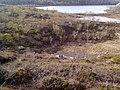 Природа севера. Май 2012 - panoramio.jpg