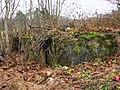 Руины каменного фундамента - panoramio.jpg