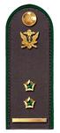 Секретарь ГГС РФ 2 класса ФССП.png