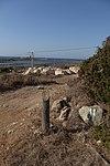 מבצר עתלית - אתרי מורשת במישור החוף 2016 (31).jpg