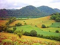 جنگلهای زیبای شمال و عکس مزارع - panoramio.jpg
