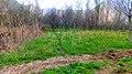 منو آزاد کنید من طبیعت رو دوست دارم - panoramio.jpg