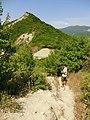 შ38, Georgia - panoramio (16).jpg