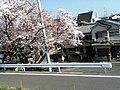 三宅神社 - panoramio (2).jpg