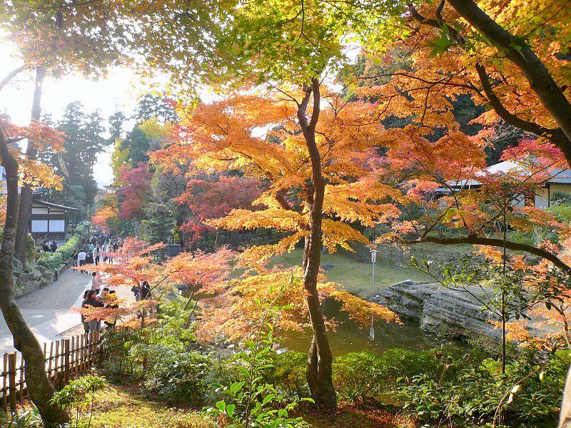 File:円覚寺 - panoramio.jpg