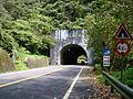 大湖格隧道.JPG