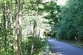 奥志賀公園線 - panoramio.jpg