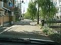 白川から善光寺京都別院 得浄明院へ - panoramio.jpg