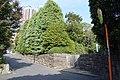 菊池家住宅 entrance.jpg