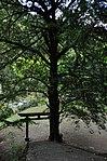 護王神社 - panoramio (15).jpg