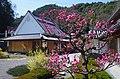 賀名生の里歴史民俗資料館 2014.3.28 - panoramio (1).jpg