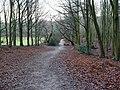 -2021-01-03 Footpath in Bacton woods, Norfolk.jpg