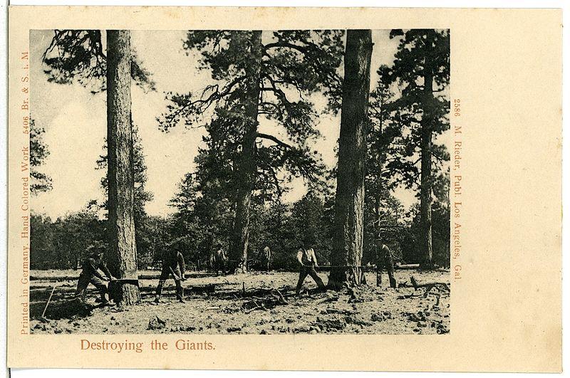 File:05406--1904-Destroying the Giants-Brück & Sohn Kunstverlag.jpg