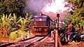 12068 Janshatabdi with WDP4 20014 - Flickr - Dr. Santulan Mahanta.jpg
