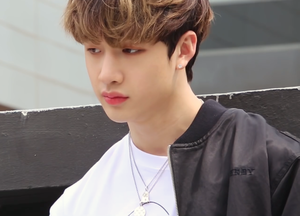 Bang Chan (Stray Kids)