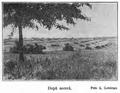 1910 După seceriş.PNG