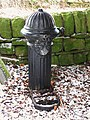 19th C cast iron water hydrant in Allendale Cemetery - geograph.org.uk - 1707119.jpg