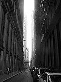 2006 01 28 NYC.jpg