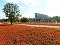 2010 Taipei Flora Expo sea of flowers.jpg
