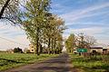 2012-04 Wódka 02.jpg