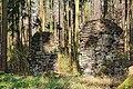 2014-03-30-bonn-ennert-geschichtsweg-braunkohle-alaun-02.jpg