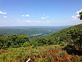 2014-08-26 14 16 45 View north-northeast from the Appalachian Trail toward the Delaware River about 5.1 miles northeast of the Delaware Water Gap in Worthington State Forest, New Jersey.JPG