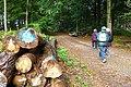 2019-10-05 Hike Forst Leucht. Reader-21.jpg