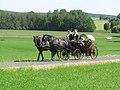 21te Rammenauer Schlossrundfahrt der Pferdegespanne (038).jpg