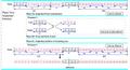 3+1phase algorithm, Phase2.png