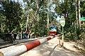 A train crossing through Lawachara National Park 01.jpg