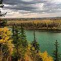 A walk through one of the many parks in Edmonton's River valley.jpg